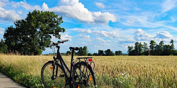 Radfahren auf dem Gebiet der Valtenesi